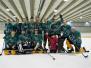 Eishockey 2011